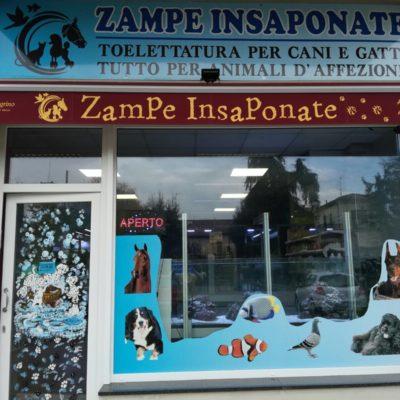 Zampe insaponate Forlimpopoli